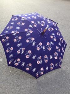 絣の日傘全体